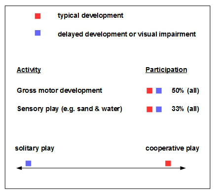 disability and inclusion play preferences