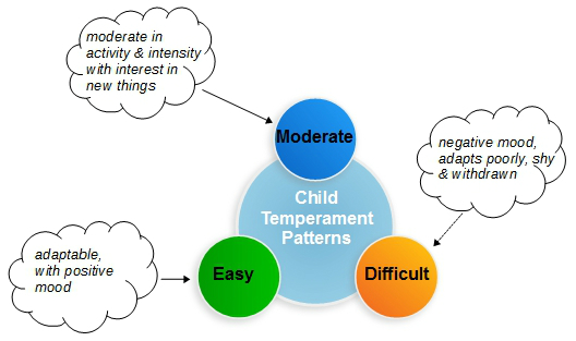 temperament patterns