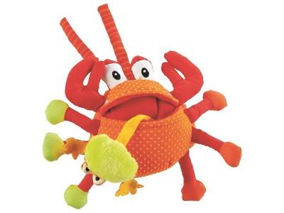 crab- newborn
