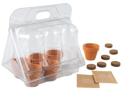 pots- outdoors