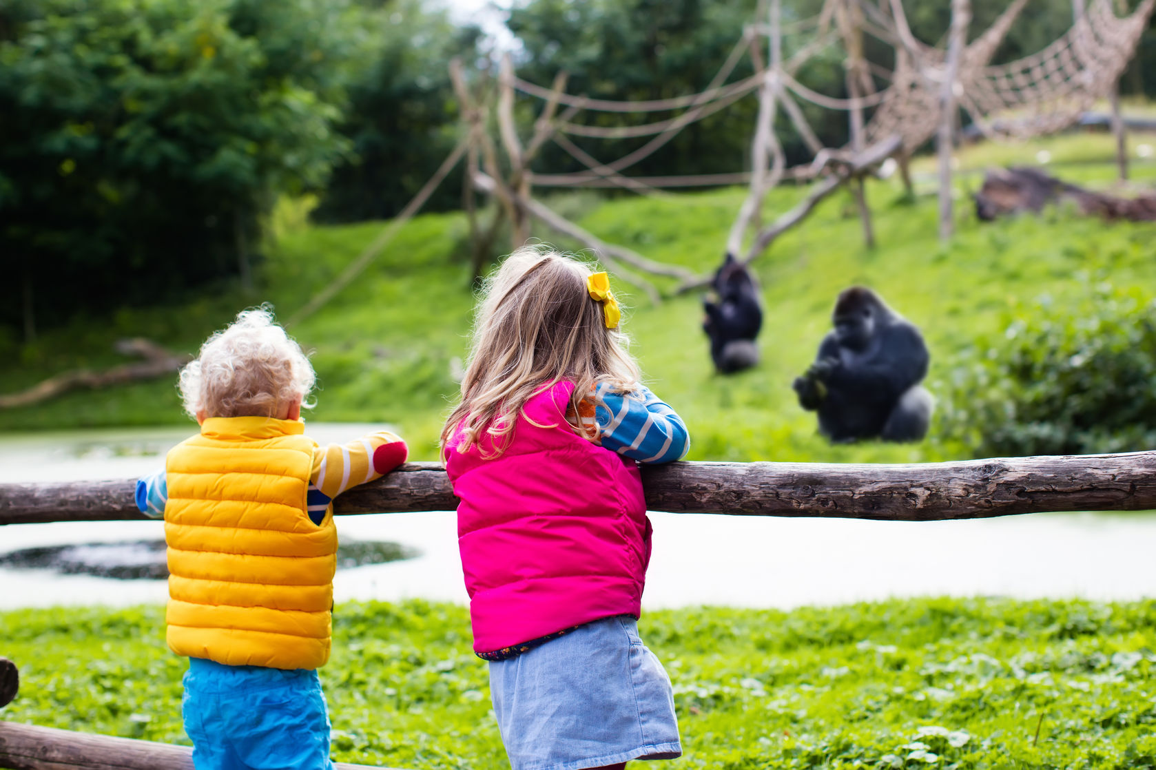 Nursery outings - a trip to the zoo