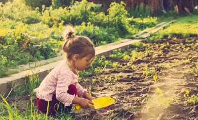 nature activities for kids - planting seeds and gardening