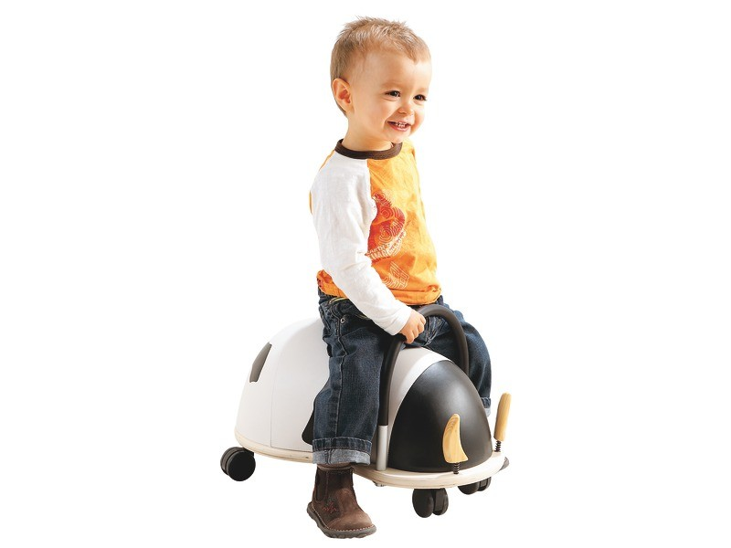 child motor skills development - Pushalong Toys