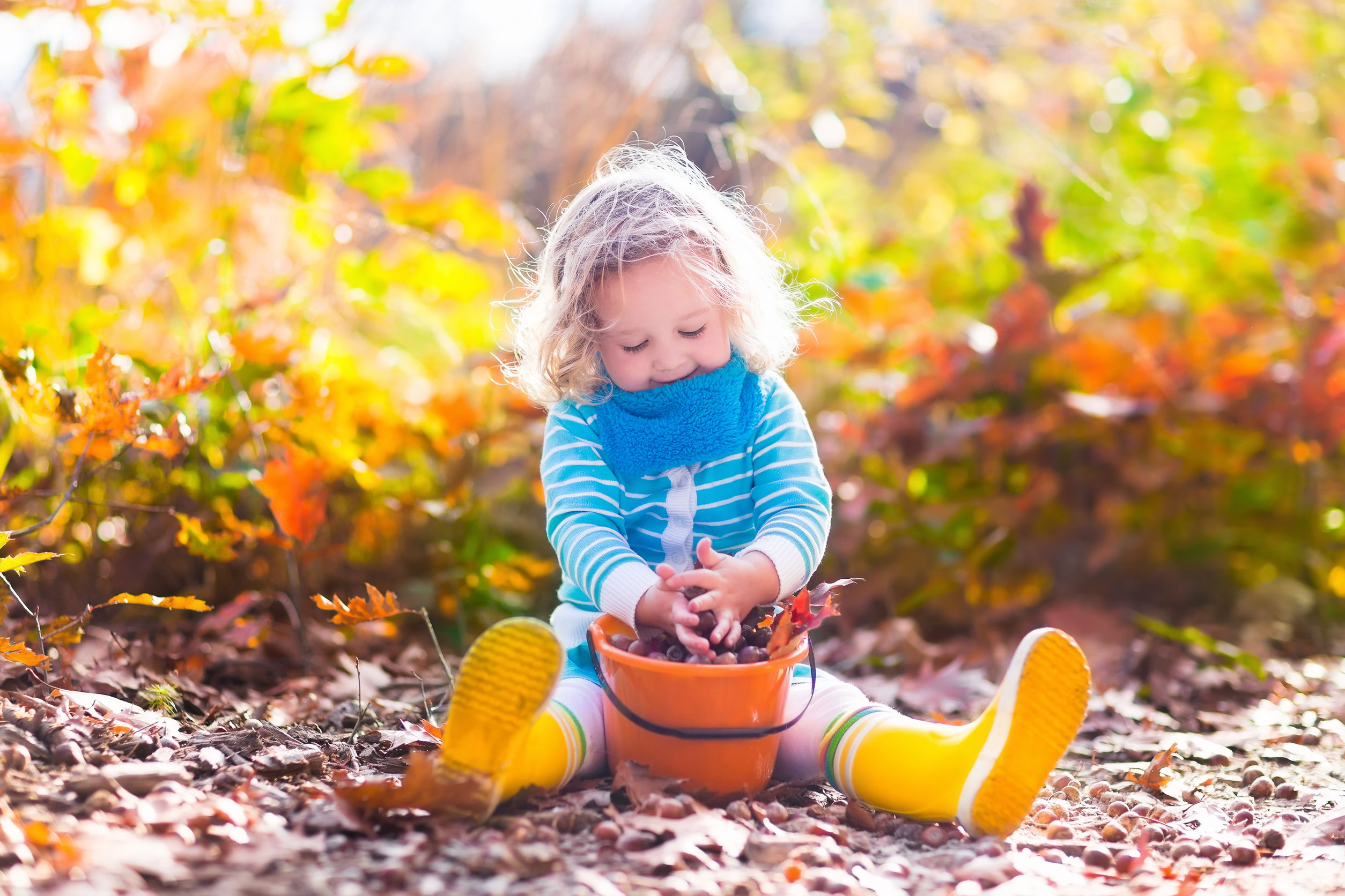 autumn craft ideas for early years - collecting sticks