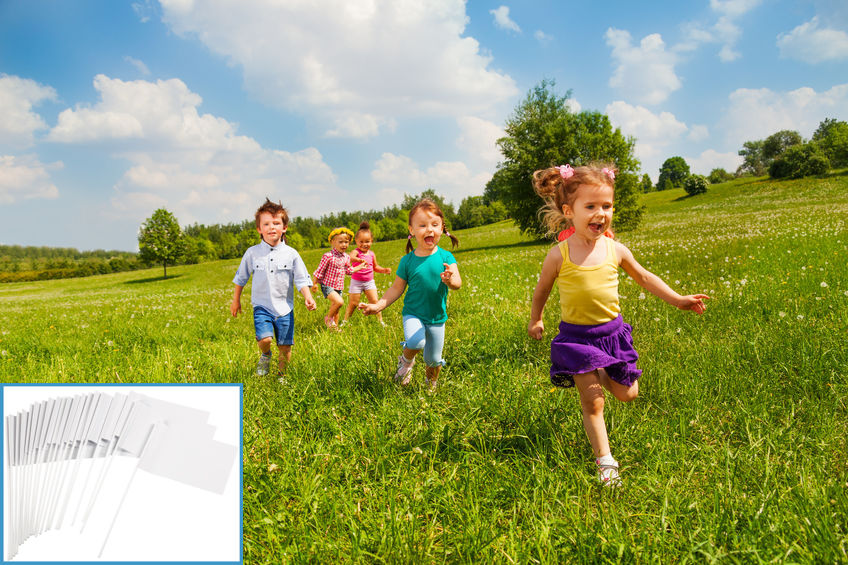 Kids Outdoor Activities - Capture The Flag